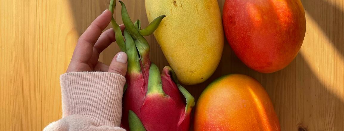¿Cómo hacer marca personal online como nutricionista?